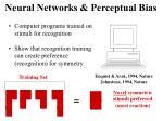 neural networks perceptual bias