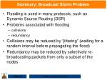 summary broadcast storm problem
