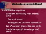 what makes a successful team