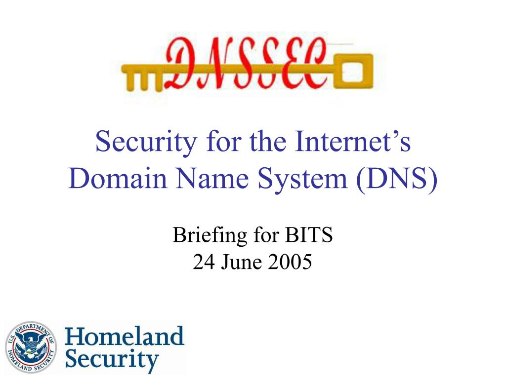 security for the internet s domain name system dns l.