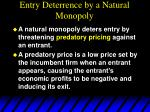 entry deterrence by a natural monopoly