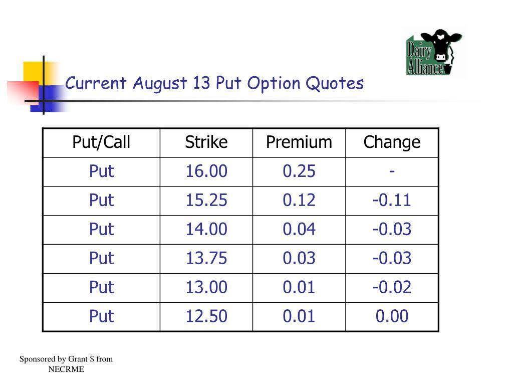 Current August 13 Put Option Quotes