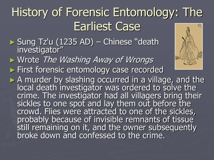 an analysis of forensic entomology the new type of detective In terms of forensic dna analysis, there is a variety of possible sources of dna evidence the more useful sources include blood, semen, vaginal fluid, nasal secretions and hair with roots it is theoretically possible to obtain dna from evidence such as urine, faeces and dead skin cells, though this is often classed as a poor source due to the lack of intact cells and high levels of.