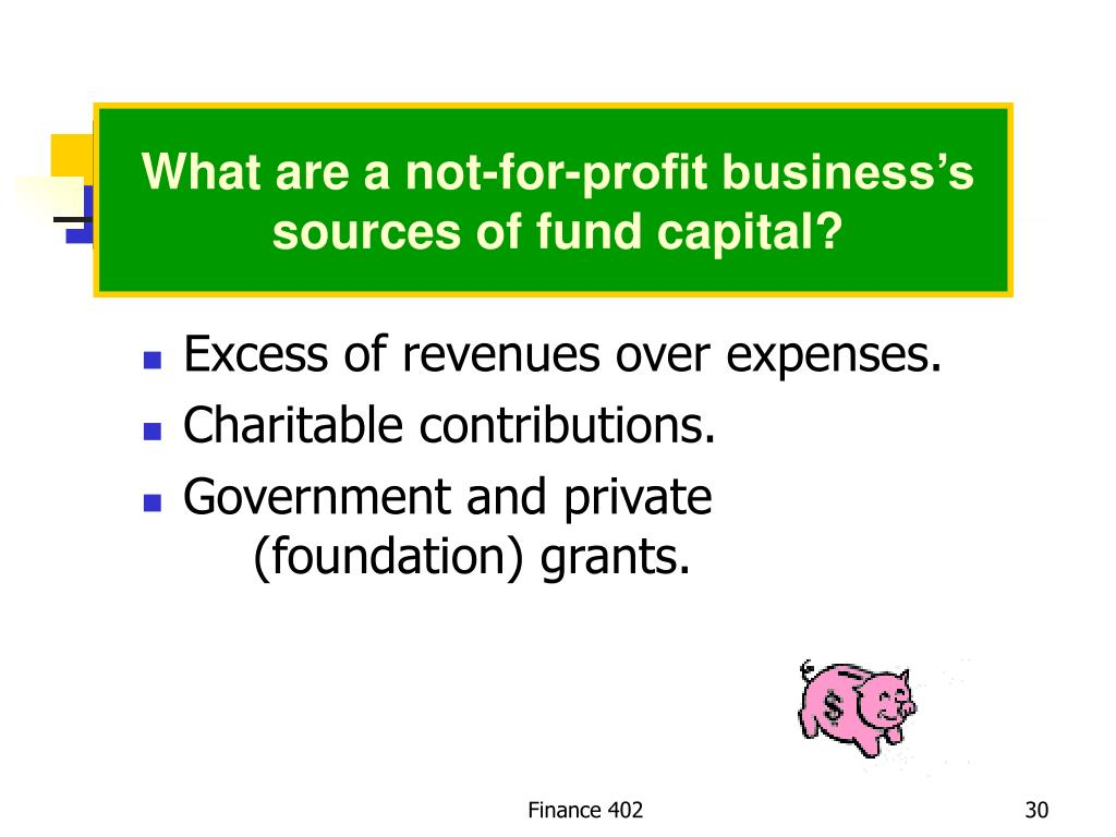 What are a not-for-profit business's