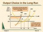 output choice in the long run