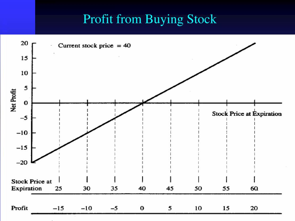 Profit from Buying Stock
