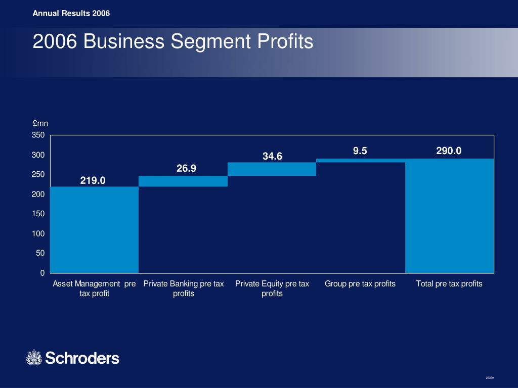 2006 Business Segment Profits