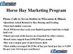 horse hay marketing program