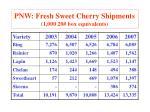 pnw fresh sweet cherry shipments 1 000 20 box equivalents