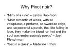 why pinot noir