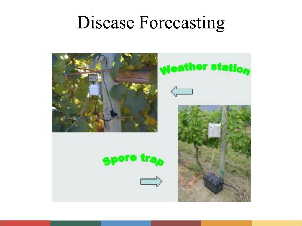 Disease Forecasting