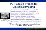 pet labeled probes for biological imaging