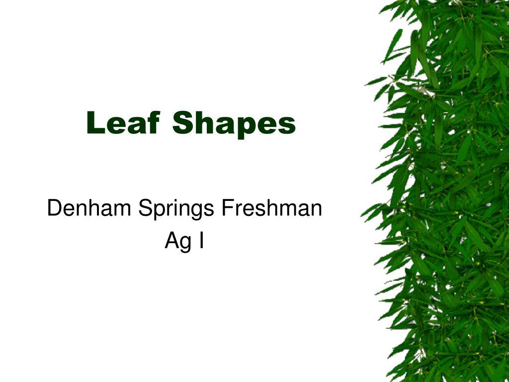 leaf shapes l.