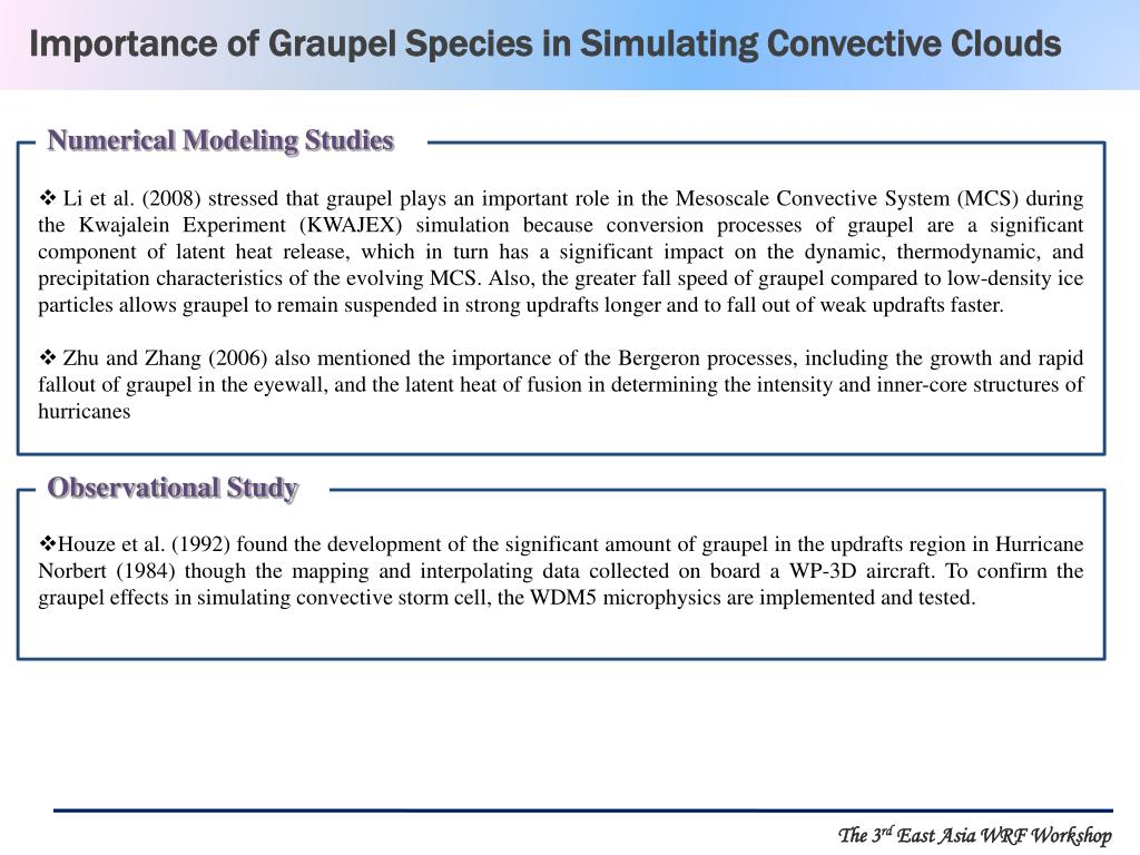 Importance of Graupel Species in Simulating Convective Clouds