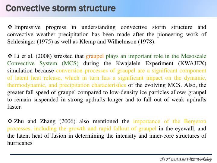 Convective storm structure