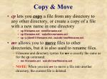 copy move