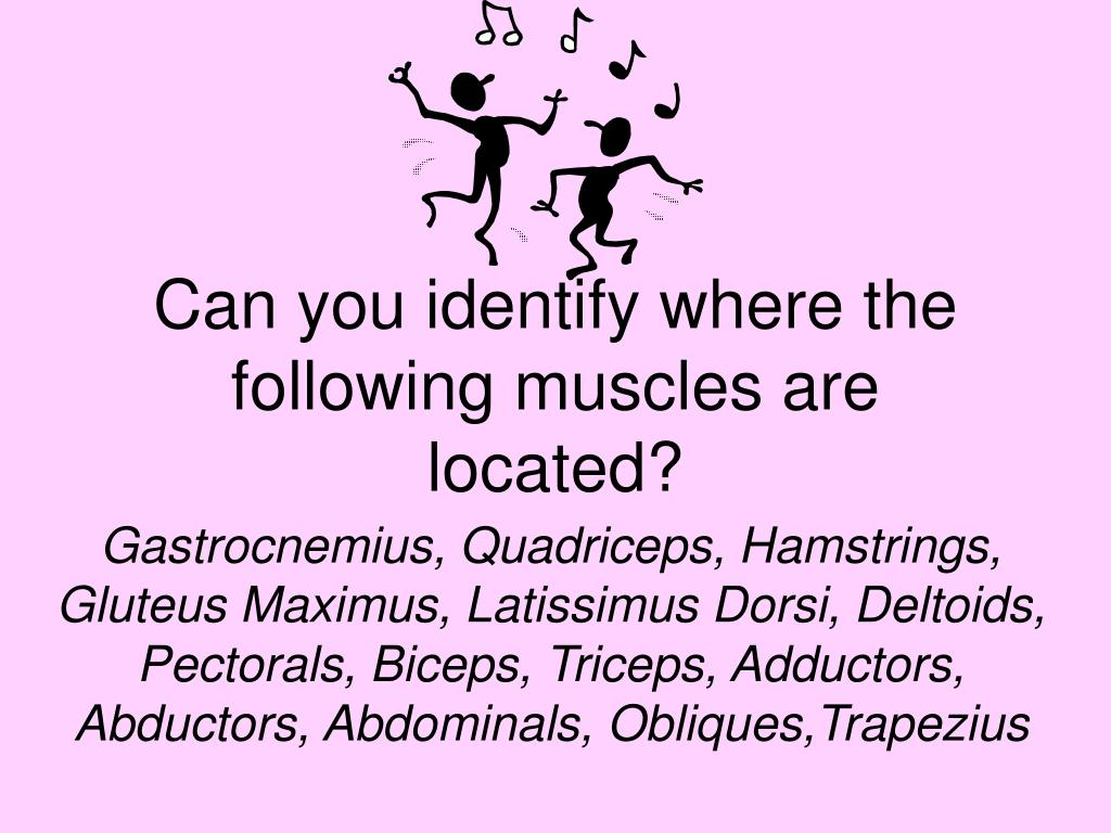 Can you identify where the following muscles are located?