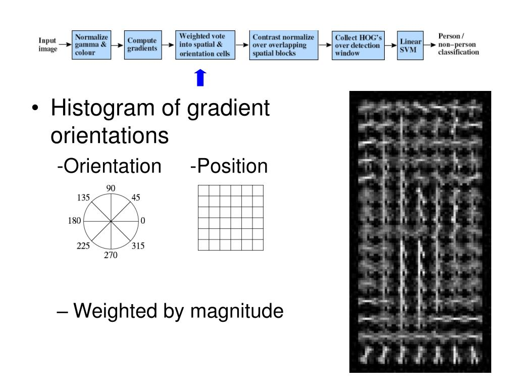 Histogram of gradient orientations