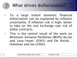 what drives dollarization