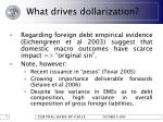 what drives dollarization16