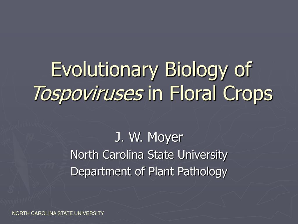 evolutionary biology of tospoviruses in floral crops l.