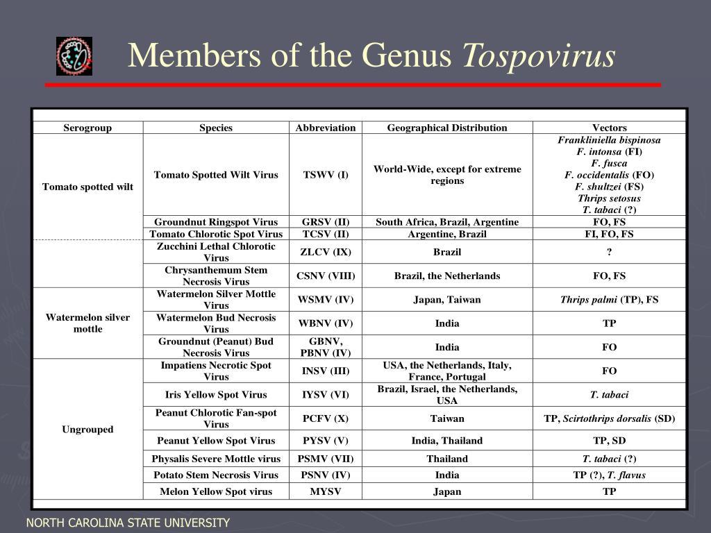 Members of the Genus