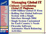 managing global it28