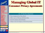 managing global it31