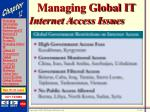 managing global it33