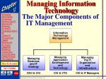 managing information technology4