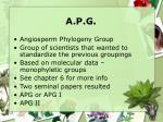 a p g