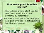 how were plant families related