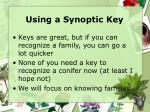 using a synoptic key