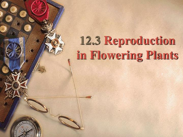 12 3 reproduction in flowering plants