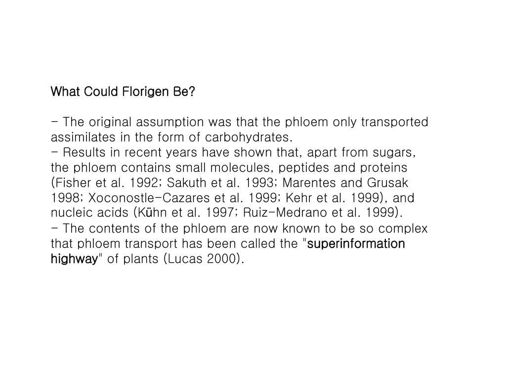 What Could Florigen Be?