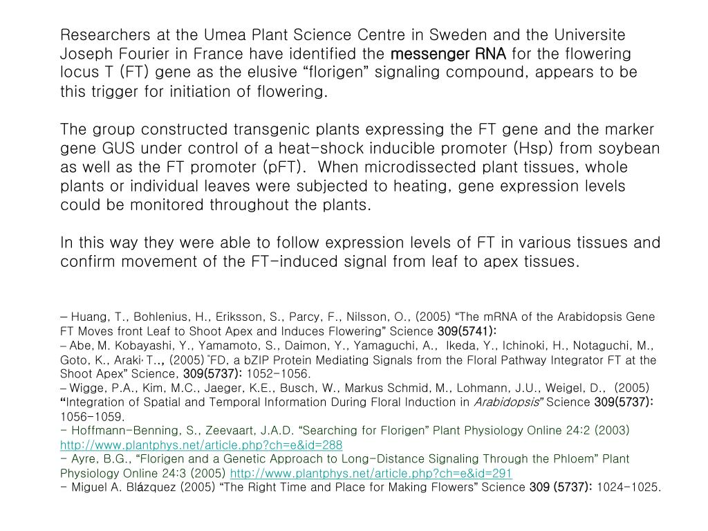 Researchers at the Umea Plant Science Centre in Sweden and the Universite Joseph Fourier in France have identified the