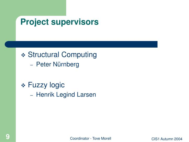 Project supervisors