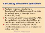 calculating benchmark equilibrium