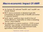macro economic impact of amr