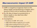 macroeconomic impact of amr