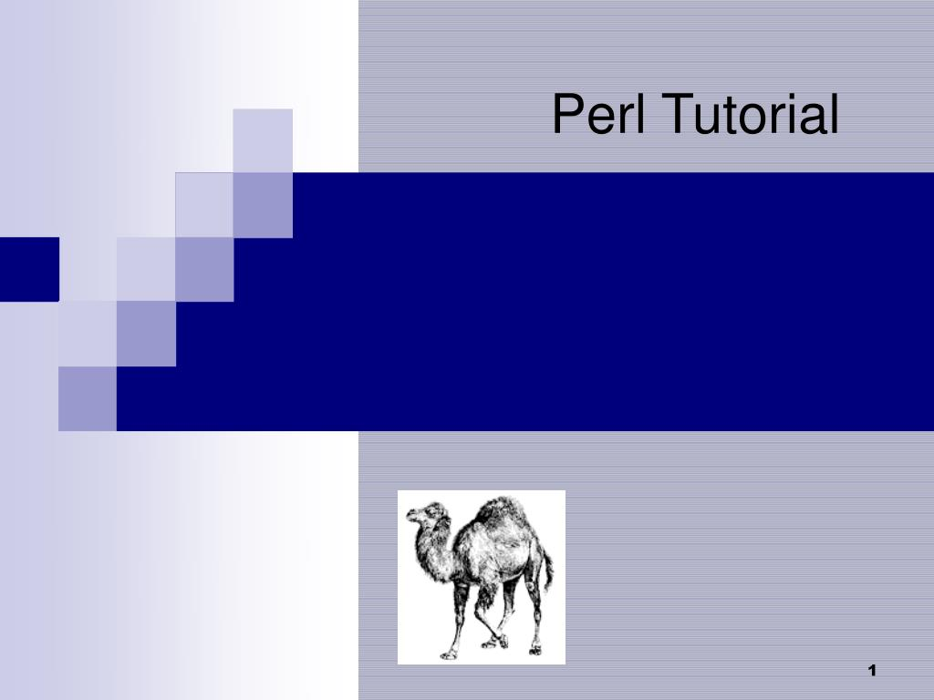 perl tutorial l.