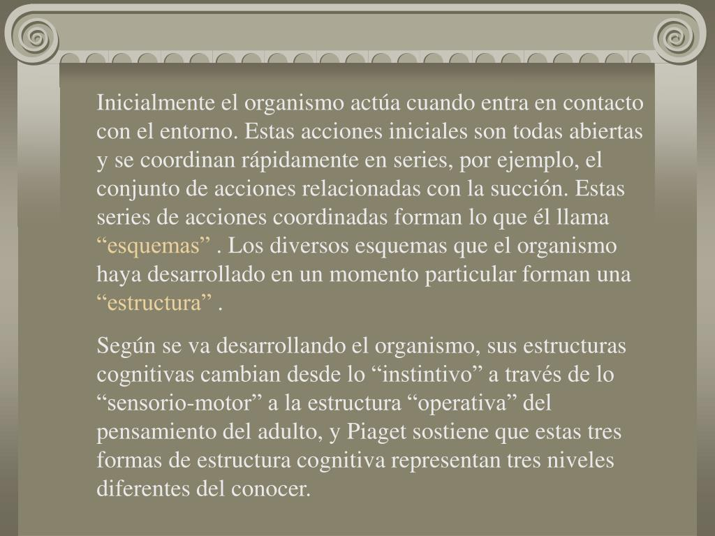 Ppt Desarrollo Cognitivo Jean Piaget Powerpoint