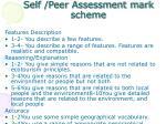 self peer assessment mark scheme
