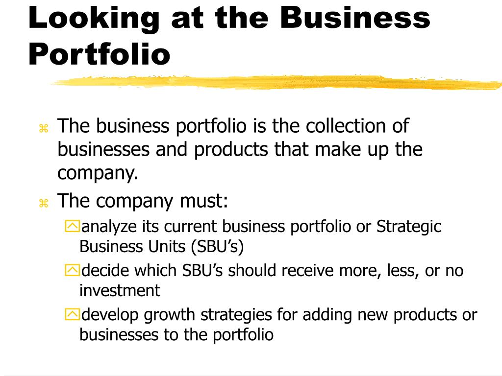 Looking at the Business Portfolio
