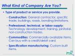 what kind of company are you