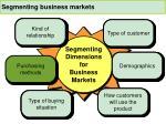 segmenting business markets