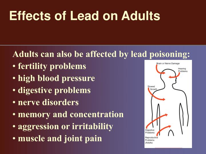 lead poisoning america will suffer essay Water is one life's most precious resources in some organisms, water comprises as much as 90% of personal body weight, in humans, this ratio is 60.