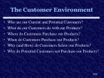 the customer environment