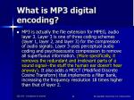 what is mp3 digital encoding