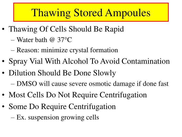 Thawing Stored Ampoules